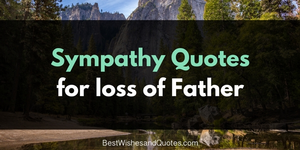 These sympathy quotes for the loss of a father will bring comfort sympathy quote for loss of father m4hsunfo