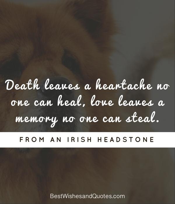 death of a pet