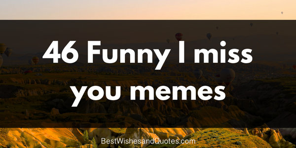 46 funny i miss you memes png