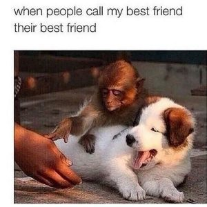 43 Best Friends Memes To Share With Your Closest Friends ...