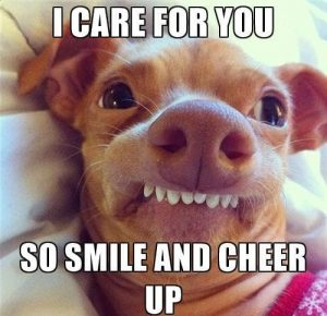 The Best Of Cheer Up Memes